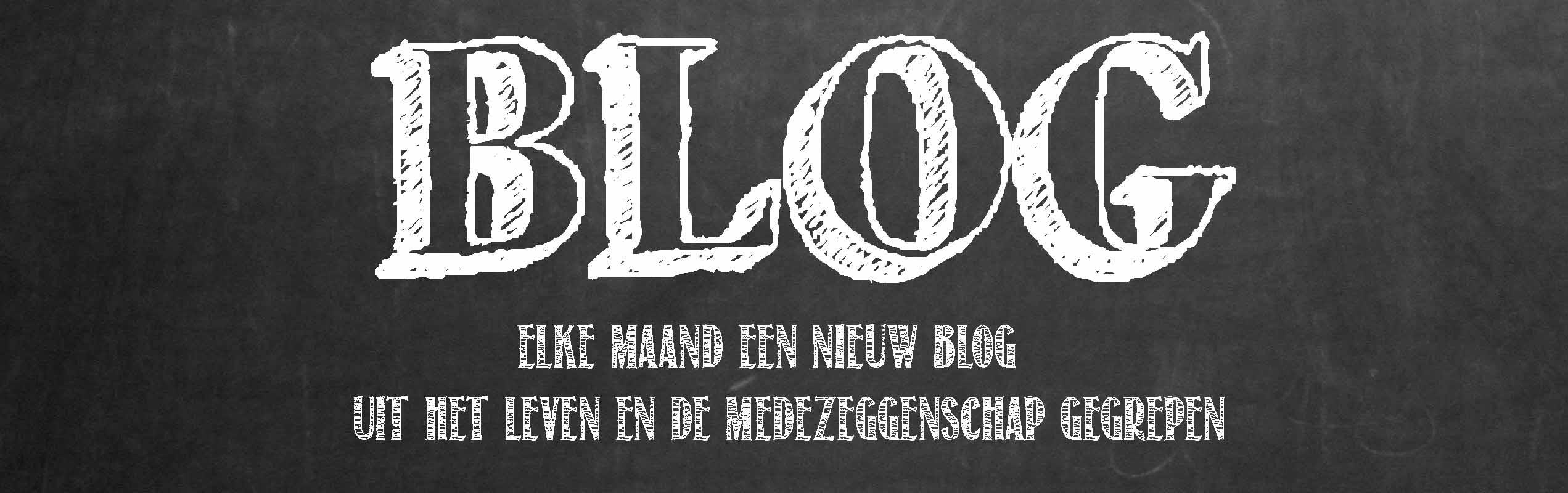 Blog MZLeeuw